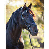 LightRider Bitless Dressage Bridle