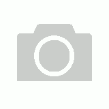 Beaded Neoprene Noseband & Poll Cover